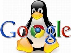 Google + Linux